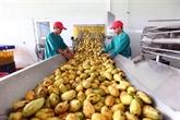 Accelerer l'exportation des fruits et des legumes vers l'Asie et l'Europe