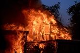 Incendies en Californie : les quartiers chics de Los Angeles touchés