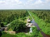 Des programmes touristiques séduisants à Cà Mau