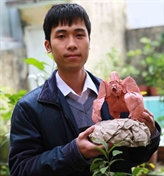 L'origamiste Nguyên Hùng Cuong, une réputation à l'international