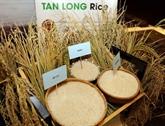 Les exportations de riz rapportent 2,24 milliards d'USD en neuf mois