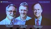 Le Nobel de médecine à la recherche sur l'adaptation du corps au manque d'oxygène