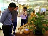 Pour une consommation responsable des plantes médicinales