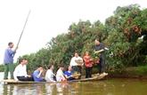 Le tourisme expérientiel à Hai Duong