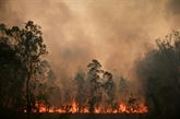 Incendies en Australie : les pompiers redoutent une aggravation de la situation