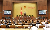 Le projet d'aéroport de Long Thành en débat