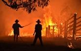 Des habitants pris au piège, le feu se rapproche de Sydney