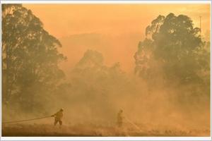 Feux en Australie  lesilence de moins en moins tenable du gouvernement sur le climat