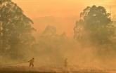 Feux en Australie : lesilence de moins en moins tenable du gouvernement sur le climat