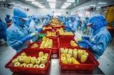 Vietnam et Pays-Bas boostent la coopération agricole