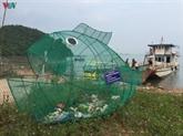 Des poissons-gloutons mangeurs de plastique
