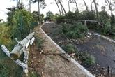 Neige : encore 14.500 foyers privés d'électricité dans la Drôme