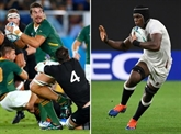 Mondial de rugby : la Rose et les Springboks en reconquête en Asie