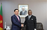 Le vice-Premier ministre Vuong Dinh Huê en visite de travail au Cameroun