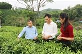 Comment optimiser le fonctionnement des coopératives au Vietnam?