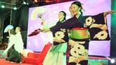 Le Festival Japon - Vietnam, un point marquant de la coopération culturelle