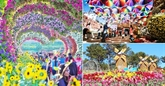 Lâm Dông : le Festival des fleurs de Dà Lat 2019 aura lieu du 20 au 24 décembre