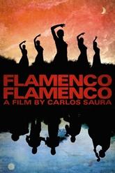 Un festival du film espagnol débute à Huê