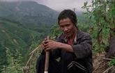 Des films vietnamiens sont présentés au Festival international de Singapour