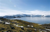 Les espèces invasives apportées par l'Homme, l'autre menace pour l'Antarctique