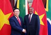 Le vice-PM Vuong Dinh Huê en visite de travail en Afrique du Sud