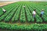 Agriculture : une collaboration solide pour une intégration efficace