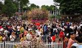 Bientôt le festival japonais de Kanagawa à Hanoï