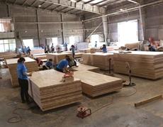 Le bois vietnamien a la cote à lexport