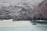 Éruption en Nouvelle-Zélande : des plongeurs à la recherche de corps