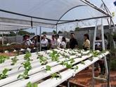 Les États-Unis aident Cân Tho le développement agricole