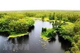Modernisation du secteur forestier et d'amélioration de la résilience côtière