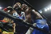 Boxe : Charlo reprend le titre WBC des super-welters à Harrison