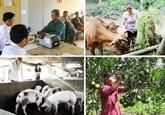 Dix événements marquants dans le secteur des affaires sociales en 2019