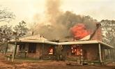 Australie : des touristes en danger en raison d'une recrudescence des incendies