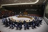 Le Vietnam prendra la présidence du Conseil de sécurité en janvier 2020