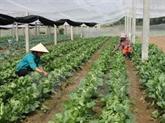 La ville de Cân Tho et la JICA travaillent sur la coopération agricole