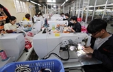 Le chiffre d'affaires à l'exportation de Hanoï augmente de 18,4% en onze premiers mois