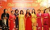 La communauté des Vietnamiens en R. tchèque célèbre le Têt traditionnel du Cochon 2019