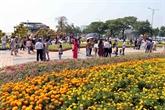 Têt du Cochon: Dà Nang et Cân Tho accueillent des afflux de touristes