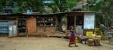 ONU: le FIDA crée un fonds pour aider la ruralité et l'agriculture en Afrique