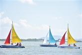 La course internationale de planche à voile à Bà Ria - Vung Tàu