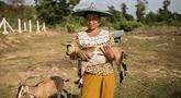 La FAO aide le Myanmar à améliorer la sécurité alimentaire