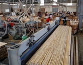 Les exportations du bois atteindront 11 milliards d'USD