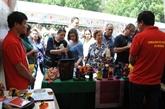 Des produits artisanaux vietnamiens présentés au Parc de Mexico
