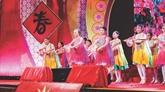 Le premier festival d'échange culturel de Singapour se tiendra en mars prochain à Hanoï