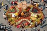 Les communautés chinoises fêtent l'année du cochon