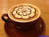 Pho et café à lœuf séduisent les Japonais