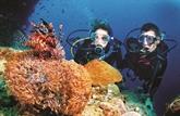 Restauration corallienne pour protéger les ressources aquatiques