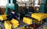 Lindustrie du caoutchouc confrontée à la chute des prix à lexportation