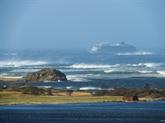 Norvège: le paquebot Viking Sky regagne la terre ferme après avoir frôlé le drame
